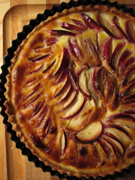 11 - French apple tart