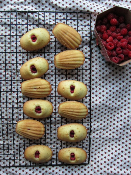 Madeleines on cooling rack