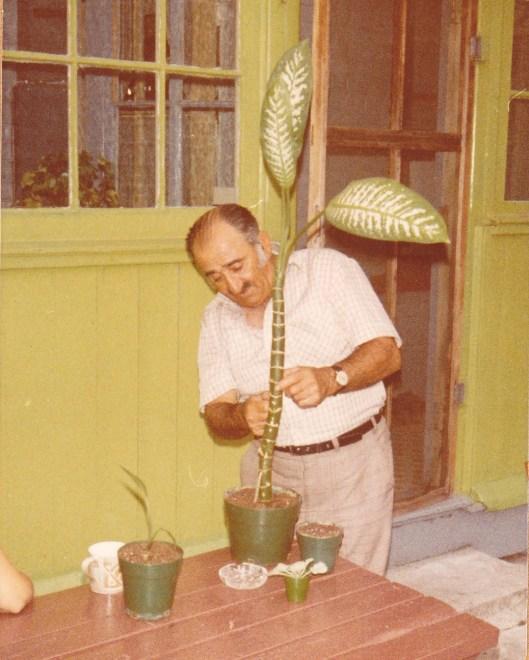 grandpa the gardener